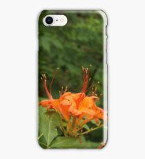 Flame Azalea II iPhone Case/Skin