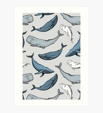 Whales are everywhere Art Print