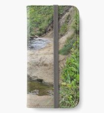 Stream at Canon Beach iPhone Wallet/Case/Skin