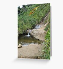 Stream at Canon Beach Greeting Card