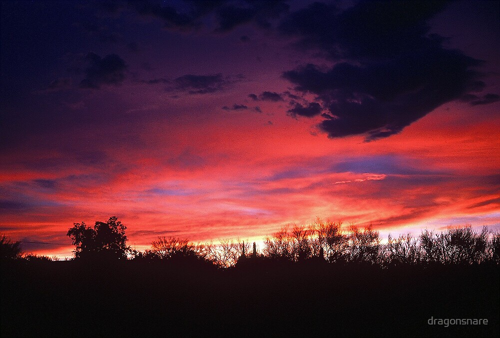Arizona Sunset after the storm #2 by dragonsnare