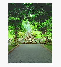 Bantry house gardens Photographic Print