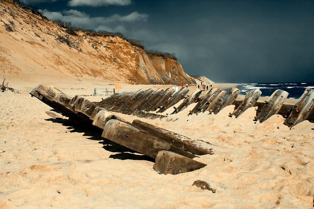 Cape Cod Shipwrecks 19 Century Schooner at Wellfleet Newcomb Hollow. by Artist Dapixara