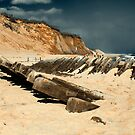 Cape Cod Shipwrecks 19 Century Schooner at Wellfleet Newcomb Hollow. by Artist Dapixara