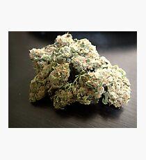 Dank Cookies Buds 420 Cannabis Ganja  Fotodruck
