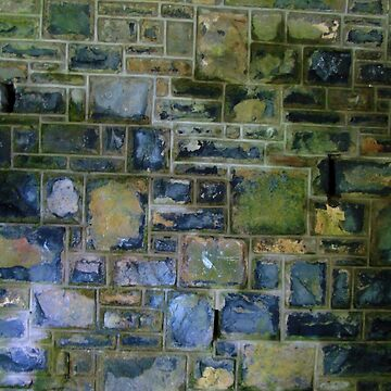 Slate squares wall by chihuahuashower