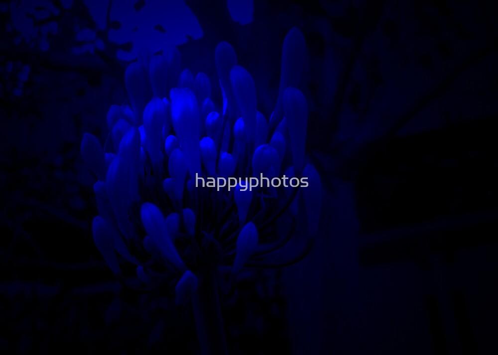 blacklite flower by happyphotos