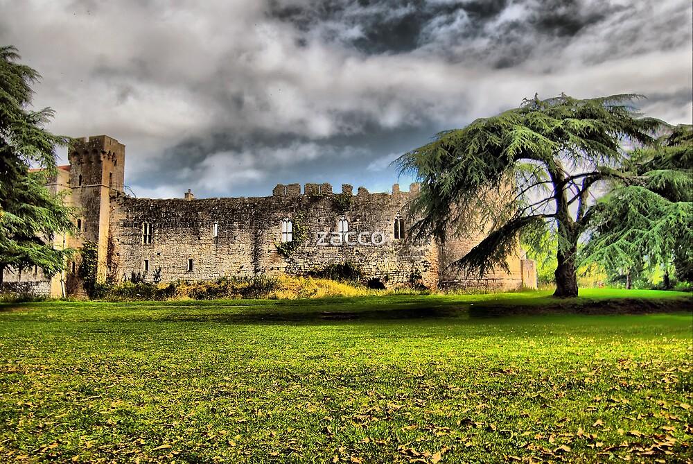 caldicot castle wales uk by zacco