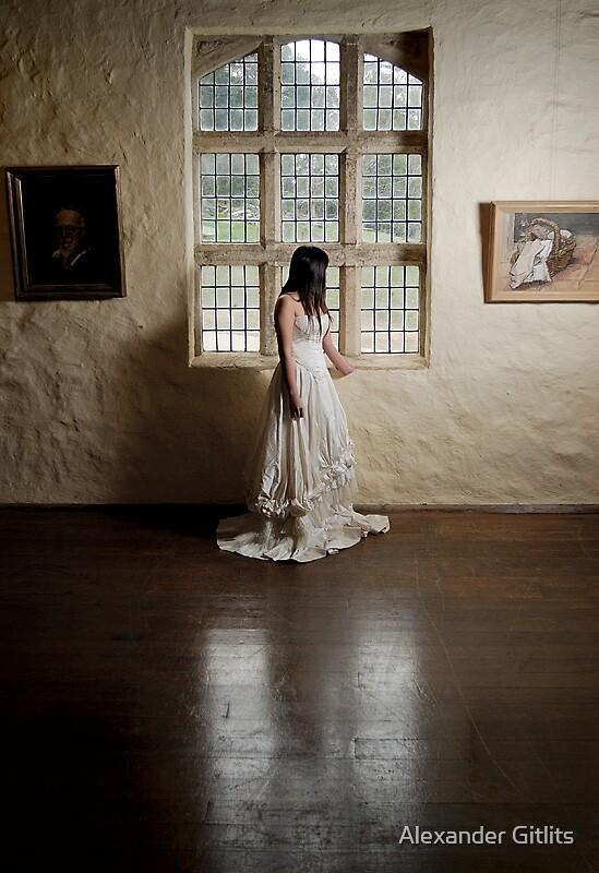 Through the Window by Alexander Gitlits