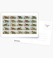 Set of 25 Famous racehorses Postcards