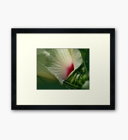 A different View Framed Print