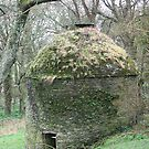 Medieval Dovecroft by Cleburnus