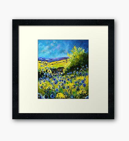blue cornflowers in ver Framed Print