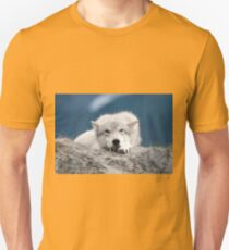 Sleepy Wolf T-Shirt