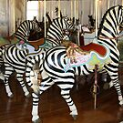 Trio of Zebras of PTC No. 6 by Patricia Montgomery