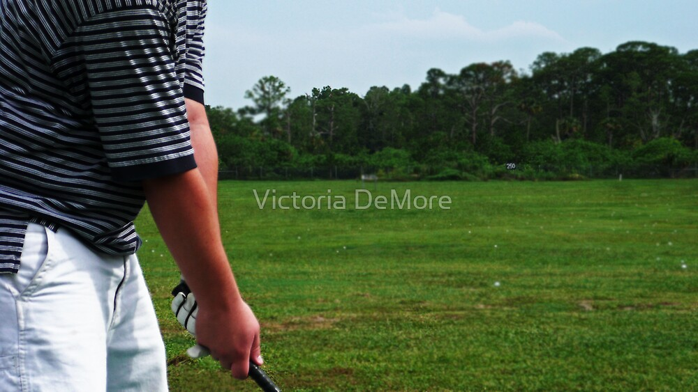 Two Hundred and Fifty Yards by Victoria DeMore