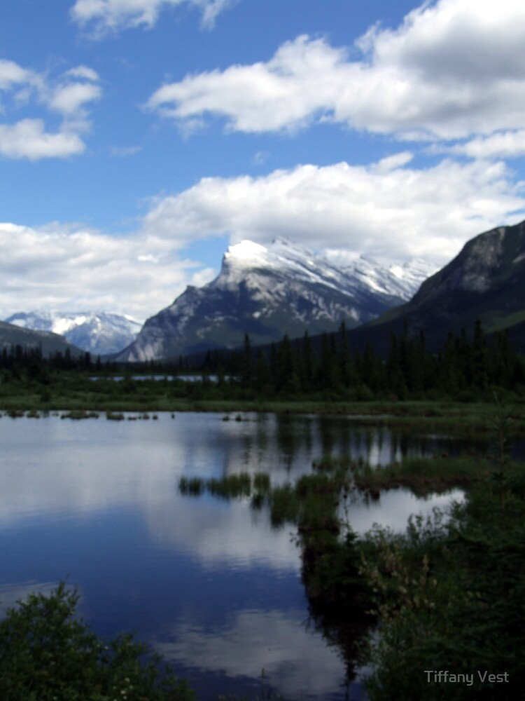 Vermillion Lakes in Summer by Tiffany Vest
