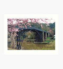 Ironbridge, Shropshire Art Print