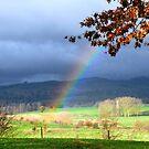 Rainbow Tree by Justin  Robertson