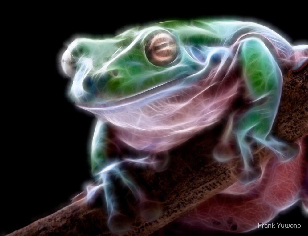 Electric Frog by Frank Yuwono