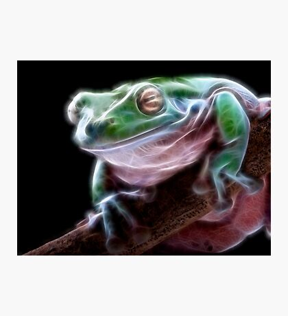 Electric Frog Photographic Print