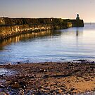 Pittenweem Lighthouse, Scotland by Christine Smith