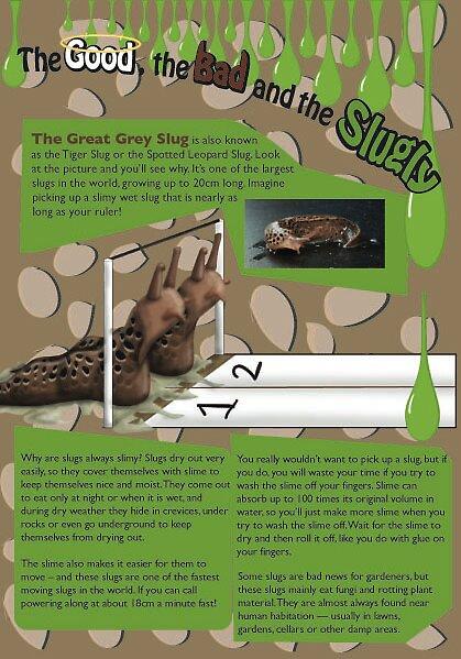 Wacky... but True Magazine - September 08 by Shannon McLean