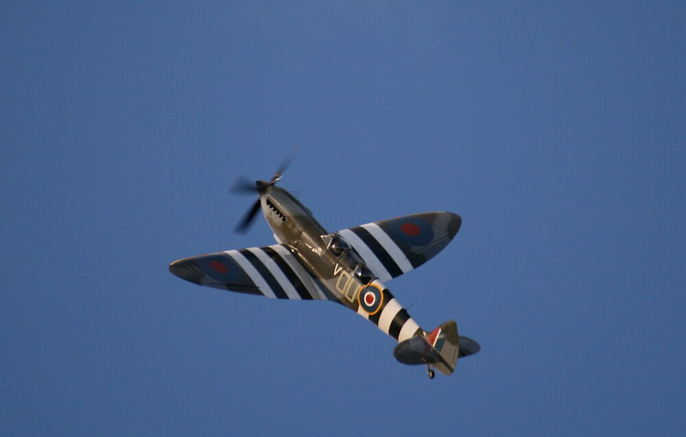 The Grace Spitfire by willJohnson