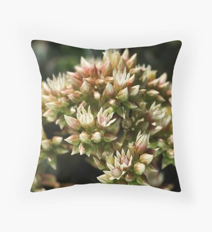 Stages OF Nature Throw Pillow
