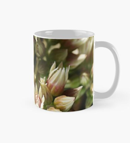 Stages OF Nature Mug
