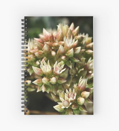 Stages OF Nature Spiral Notebook