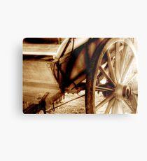 Steller CARTography Metal Print