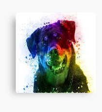 The Colors of Love are a Rottweiler Canvas Print