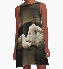 Desert Rocks Front and Center A-Line Dress