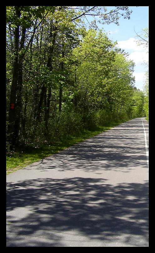 Road by pinksyllibus