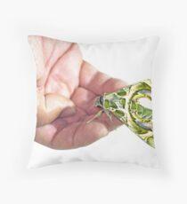 Oleander Hawk-Moth (Daphnis Nerii) resting on a hand Throw Pillow