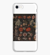 Florentine School, second quarter of the 17th century FLOWER STUDIES, TULIPS, HYACINTHS, DAFFODILS, POPPIES, LILY OF THE VALLEY, ANENOMES, JONQUILS AND OTHER FLOWERS iPhone Case/Skin
