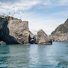 Rugged Island Resurrection Bay  by John  Kapusta