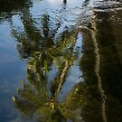 Whimsical Tropical Reflections by Georgia Mizuleva