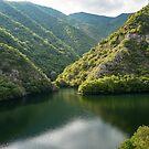 Green Mountain Lake by Georgia Mizuleva