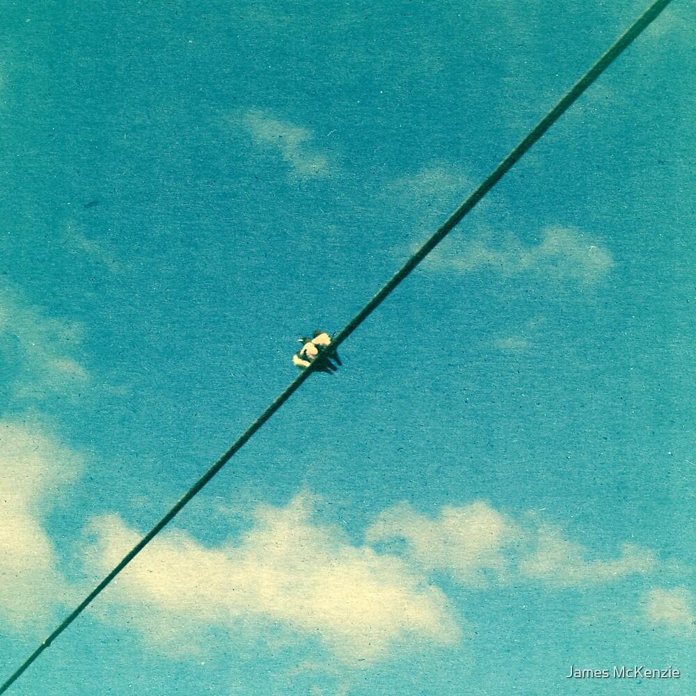 Through the Windshield by James McKenzie
