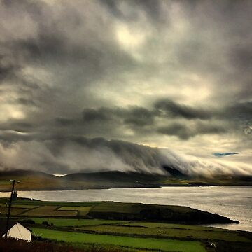 Bolus Head Under A Cloud by rorycobbe