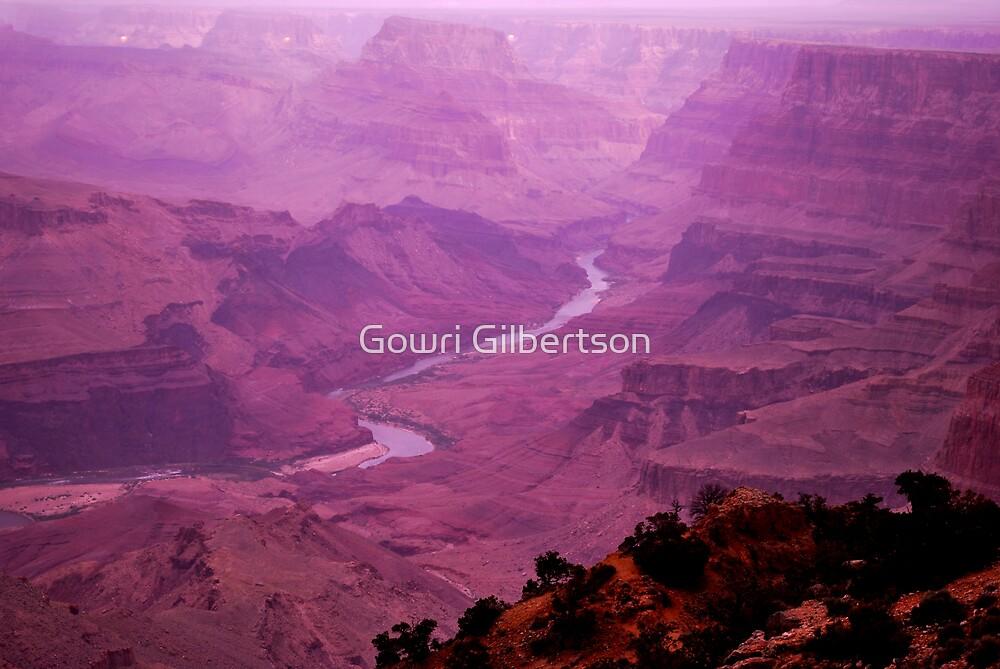 Grand Canyon by Gowri Gilbertson