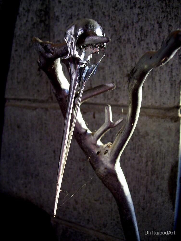 silverwood image by DriftwoodArt