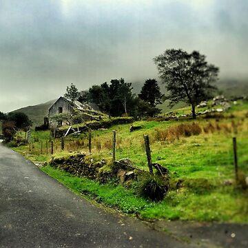 Abandoned Cottage Ballachbeama Gap by rorycobbe