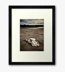 They Said The Beach Was Dangerous Framed Print