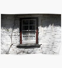 Bunratty cottage window Poster