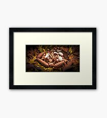 Autumnal still life composition with mushrooms Framed Print