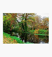 River Wandle in Autumn, Morden, England Photographic Print