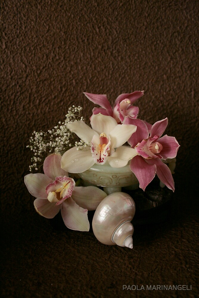 Still life with Orchids, sea shell and chinese jade by PAOLA MARINANGELI
